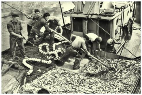 Un buen dia de Pesca- MAGAR