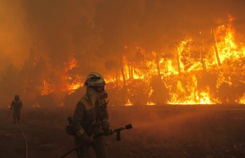 Orense se llevó la peor parte, con más de 22.000 hectáreas quemadas, seguida de Pontevedra con 20.085 y Lugo con 5,735.