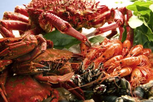 El diario británico publica un amplio reportaje en el que ensalza la gastronomía gallega.