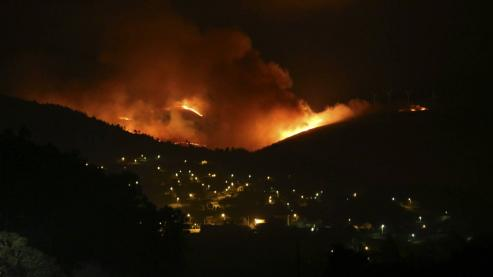 Presenta un paquete de 30 medidas para avanzar en las labores de prevención y ordenación del monte y para perseguir a los incendiarios.