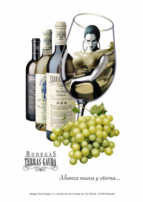 Terras Gauda, el vino Albariño de la comarca del Rosal