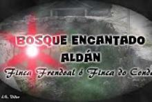 Bosque Encantado - Peninsula de Morrazo